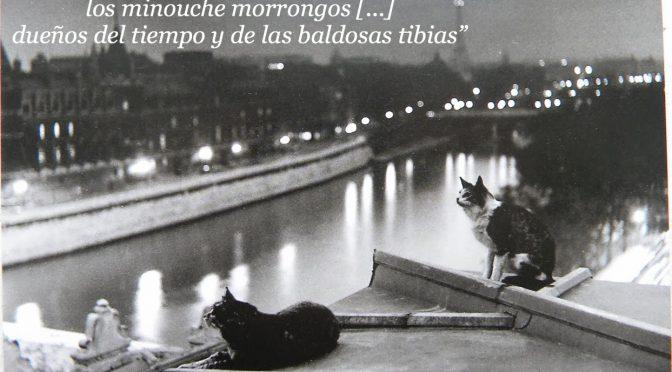 RAYUELA: Descripción de la atmósfera Parisina (cap4)